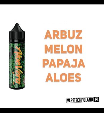 PREMIX AloeVera 40ml - Meloons