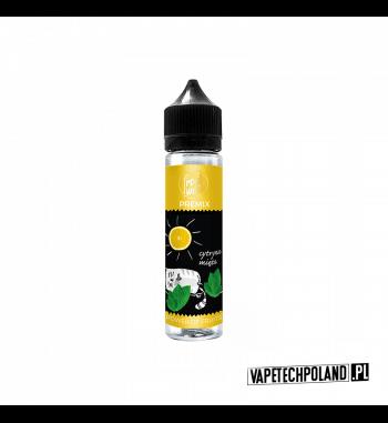 Premix FreakWeek - Cytryna Mięta 40ml Premix o smakucytryny z miętą.40ml płynu w butelce o pojemności 60ml.Produkt Shake a