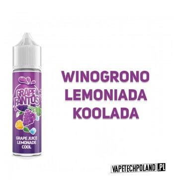 Premix FANTOS - GRAPE FANTOS 40ML Premix o smakulemoniady winogronowejz dodatkiem koolady. 40ml płynu w butelce o pojemności