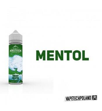Premix Arctica - Menthol 40ML Premix o smaku mentholowym.40ml płynu w butelce o pojemności 60ml.Produkt Shake and Vape prze