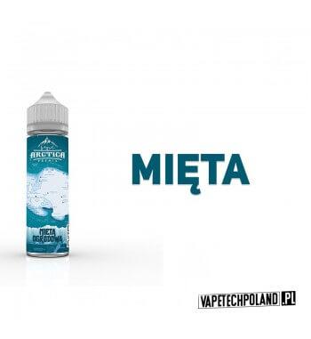 Premix Arctica - Mięta Ogrodowa 40ML Premix o smaku mięty.40ml płynu w butelce o pojemności 60ml.Produkt Shake and Vape prz