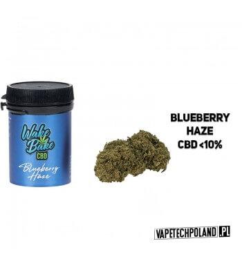 SUSZ KONOPNY CBD WAKE AND BAKE - BLUEBERRY HAZE 1G Najwyższej jakości legalny susz konopny z certyfikowanych upraw. Ręcznie sel