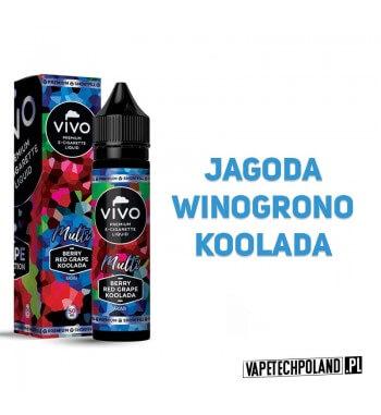 Premix VIVO V.S. Multi - Berry/Red Grape/Koolada 50ML VIVO Vape Selection to premixy premium znanej marki liquidów. Najwyższej