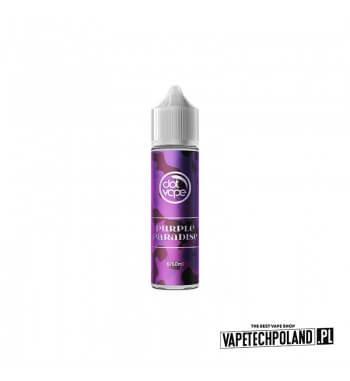 LONGFILL DOT VAPE - Purple Paradise 6ml Longfill o smakucukierków skittles Longfill jest to nowy produkt na rynku EIN. Charakt